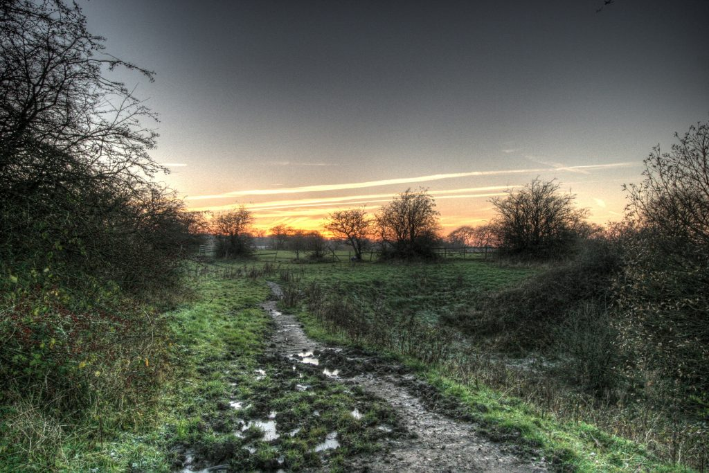 Footpath and fields within Godley Green
